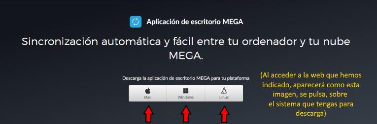 descarga oficial de mega